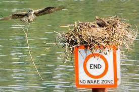 no wake s