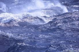 igh seas3